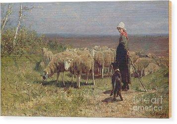Shepherdess Wood Print by Anton Mauve