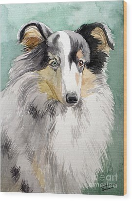 Shetland Sheep Dog Wood Print