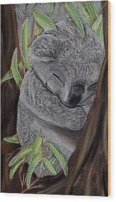 Shhhhh Koala Bear Sleeping Wood Print by Kelly Mills