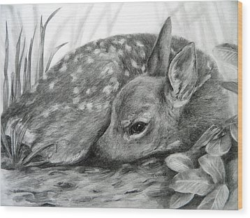 Wood Print featuring the drawing Shhhhh... by Meagan  Visser