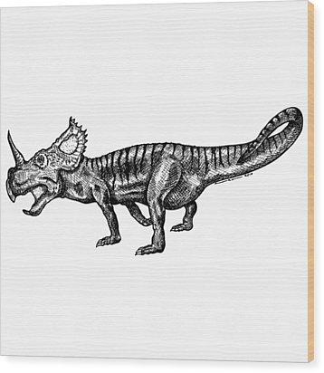 Shielizard Wood Print by Karl Addison