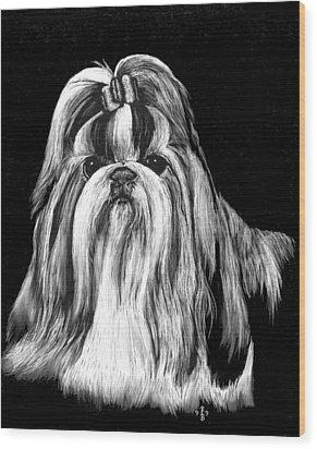 Shih Tzu Wood Print