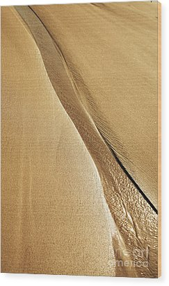 Shimmering Sand Wood Print by Brandon Tabiolo - Printscapes