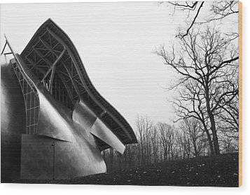 Shine On Gehry At Bard College New York State Wood Print by Jane McDougall