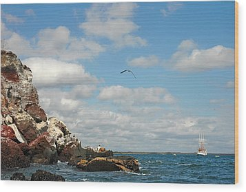 Ship Off Shore Wood Print by Alan Lenk