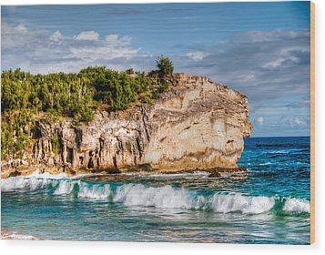 Shipwreck Beach Wood Print