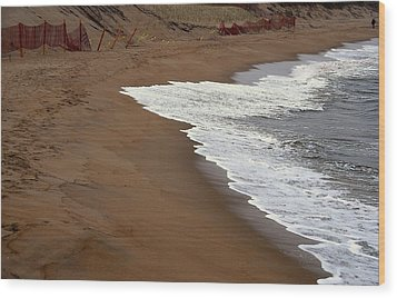 Shore Art - Plum Island Wood Print by AnnaJanessa PhotoArt