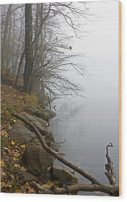 Wood Print featuring the photograph Shoreline by Alan Raasch