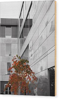 Shoreline City Hall Wood Print