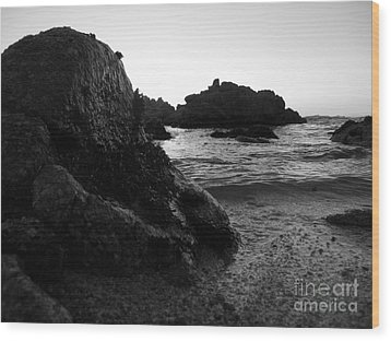 Shoreline Monolith Monochrome Wood Print