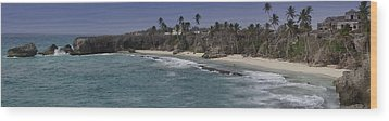 Shores Of Barbados Wood Print by Andrew Soundarajan