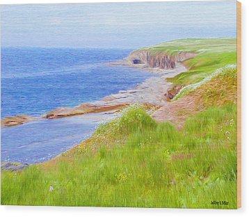 Shores Of Newfoundland Wood Print by Jeff Kolker