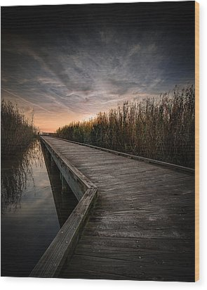 Shoveler Boardwalk Wood Print