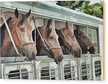 Show Horses On The Move  Wood Print by Wilma Birdwell