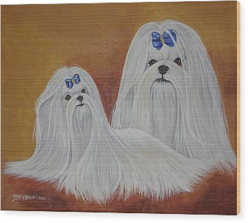 Show Maltese Wood Print by Laura Bolle