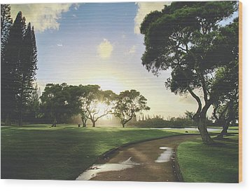 Wood Print featuring the photograph Show Me The Way by Laurie Search