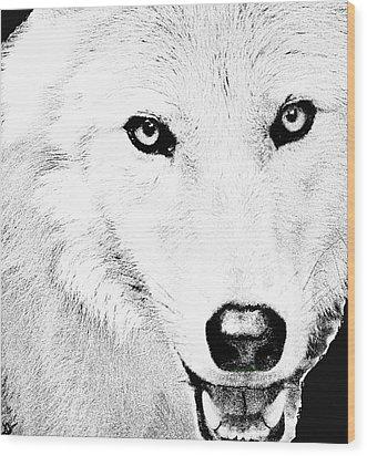 Shy Wolf Wood Print