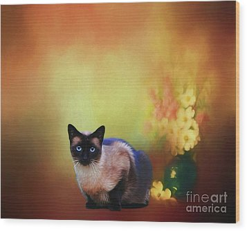 Siamese If You Please Wood Print by Suzanne Handel