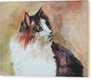 Siberian Forest Cat Wood Print by Khalid Saeed