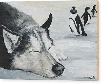 Siberian Huskey Wood Print by Charlotte Yealey