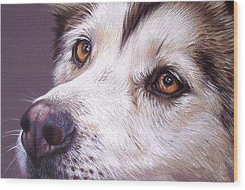 Siberian Husky Wood Print by Elena Kolotusha