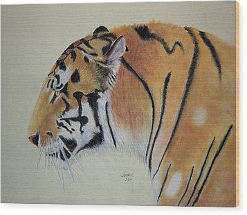 Siberian Tiger Wood Print by Joanne Giesbrecht