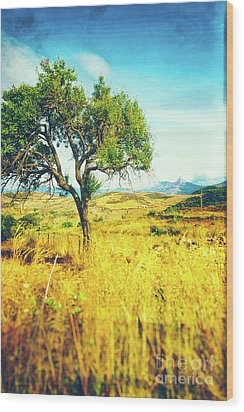 Wood Print featuring the photograph Sicilian Landscape With Tree by Silvia Ganora
