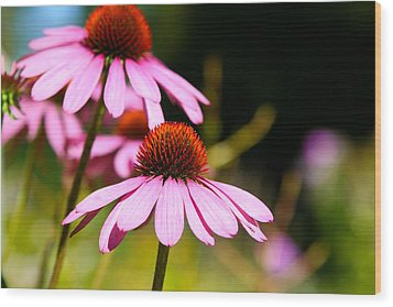 Wood Print featuring the photograph Side By Side by Gary Smith