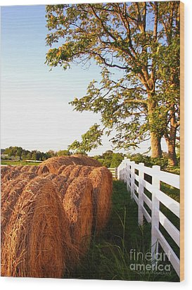 Side-by-side Wood Print by Todd A Blanchard