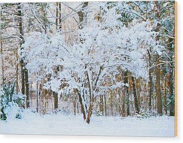 Siebold Viburnum In Snow Wood Print
