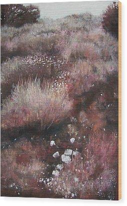 Sienna's Path Wood Print by Anita Stoll