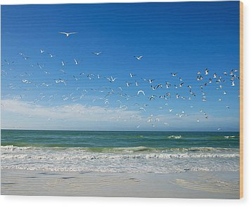 Siesta Key Wood Print by Gouzel -