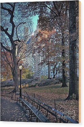 Wood Print featuring the photograph Sights In New York City - Central Park by Walt Foegelle
