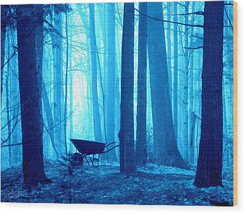 Wood Print featuring the photograph Silent Forest by Al Fritz