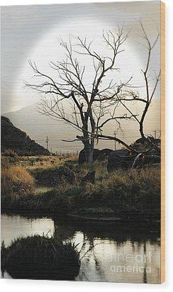 Silent Lucidity Wood Print by Lori Mellen-Pagliaro