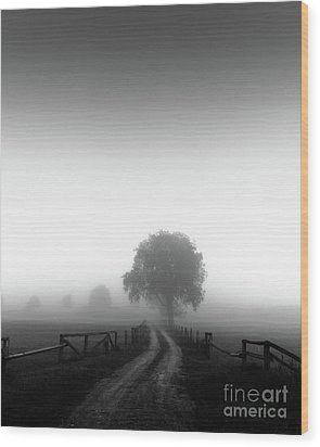 Wood Print featuring the photograph  Silent Morning  by Franziskus Pfleghart
