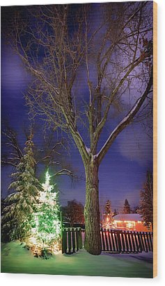 Wood Print featuring the photograph Silent Night by Cat Connor
