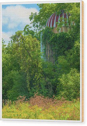 Silent Silo On Nottleson Road Wood Print