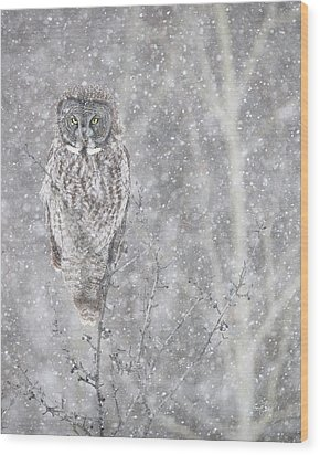 Wood Print featuring the photograph Silent Snowfall Portrait by Everet Regal