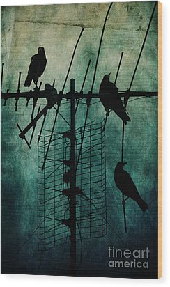 Silent Threats Wood Print by Andrew Paranavitana