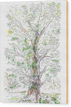 Silent Witness Wood Print by Regina Valluzzi