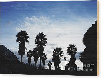 Silhouette In Tropea Wood Print