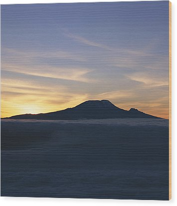 Silhouette Of Mount Kilimanjaro Wood Print by David Pluth