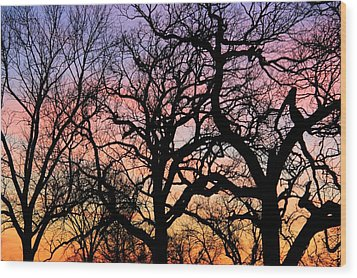 Wood Print featuring the photograph Silhouettes At Sunset by Chris Berry