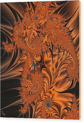 Silk In Orange Wood Print by Ron Bissett
