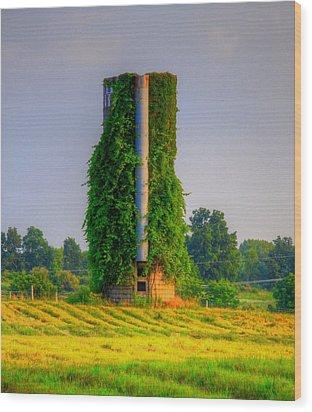 Silo Wood Print by Robert Pearson