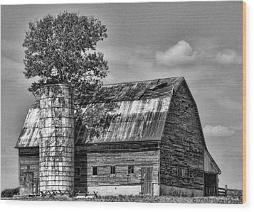 Silo Tree Black And White Wood Print