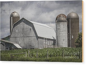 Silos Standing Wood Print