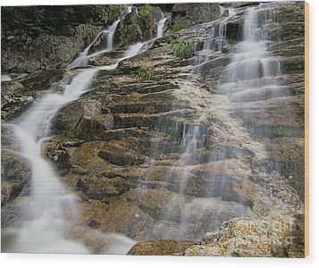 Silver Cascades - Crawford Notch New Hampshire Wood Print by Erin Paul Donovan