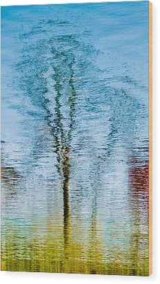 Silver Lake Tree Reflection Wood Print by Michael Bessler